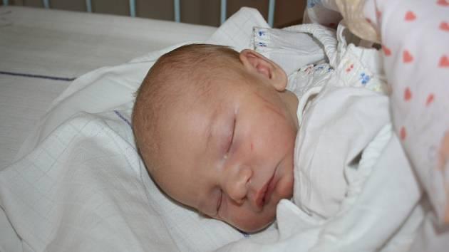 Míša (3,6 kg, 50 cm) spatřil světlo světa 5. ledna. Jeho rodiči jsou Mirka a Michal Bohuňkovi z Horní Rokyté.