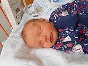 Emílie Minxová se narodila 20. dubna, vážila 2,86 kg a měřila 46 cm. Maminka Marcela a tatínek Jindřich si ji odvezou domů do Brandýsa nad Labem, kde už se na ni těší bráškové Jindřich a Vojtěch.