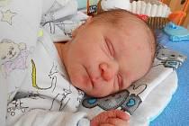 Adámek Novotný se narodil 8. května, vážil 3,44 kg a měřil 50 cm. S maminkou Kateřinou, tatínkem Davidem a sestřičkou Nikolkou bude bydlet v Mladé Boleslavi.
