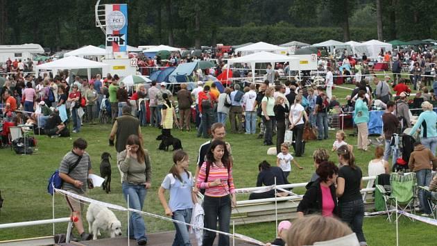 Na krásné louce se sešlo na stovky psích plemen.