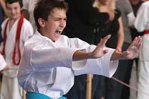 Pohár v karate v Kostelci nad Orlicí