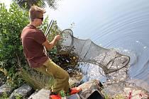 Tři desítky dětí proseděly velkou část soboty u Jizery, kde se konaly závody registrovaných i neregistrovaných rybářů.