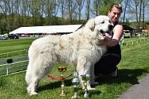 Krásná louka v Mladé Boleslavi přivítala v sobotu Klub chovatelů málopočetných plemen psů.