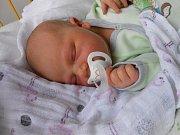 Teodora Loupová se narodila 25. prosince, vážila 3,36 kg a měřila 51 cm. S maminkou Lucií a tatínkem Pavlem bude bydlet v Mladé Boleslavi.