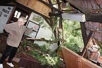 Paní Anině Šilingerové spadl strom na dům v Horním Bousově. Zničil střechu a část větví skončila v podkroví.