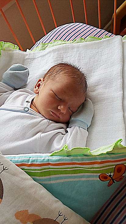 Michael Melkovič se narodil 3. července, vážil 3,84 kg a měřil 50 cm.  S maminkou Karolínou a tatínkem Peterem bude bydlet v Mladé Boleslavi.