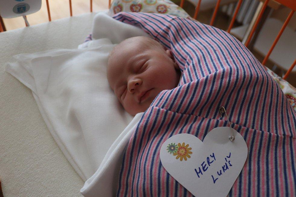 Lukáš Mery, Luštěnice. Narodil se 22. července, vážil 3,74 kg a měřil 50 cm. Domů si ho povezou rodiče Marie a Libor.