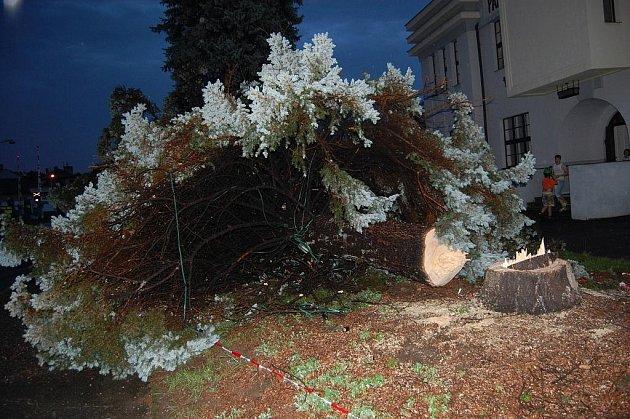 Vánoční strom v Bakově u Sokolovny už nikdy zářit nebude