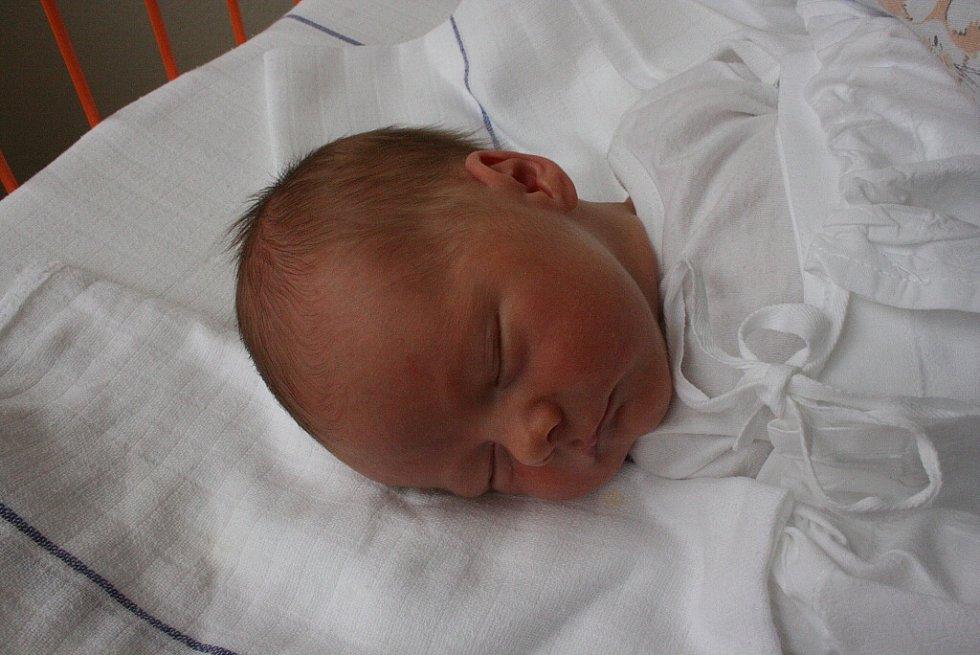 Do rodiny Petry, Viktora a Matyáše přibyl 16. června nový člen. Je jím Kubíček (49 cm, 3,3 kg).