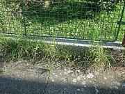 Obyvatelé Žerčic na Mladoboleslavsku se pustili do úklidu části vesnice.