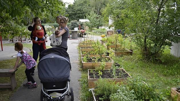 Komunitní zahrada slouží nejenom k zahradničení, ale také jako místo k setkávání. Ilustrační foto.