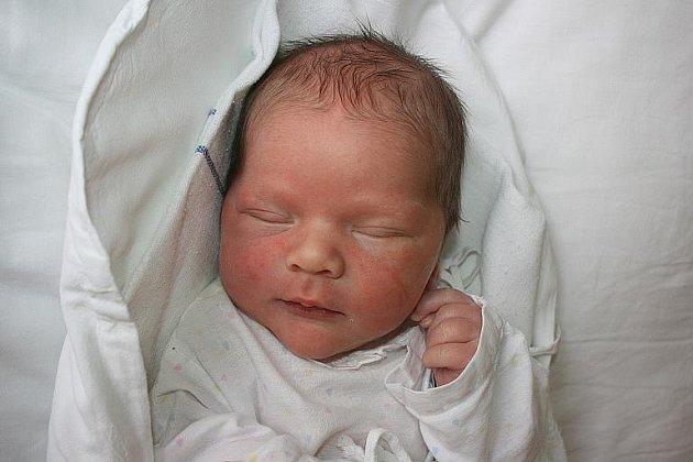 Do rodiny Petry, Dušana a Matěje Pluhařových z Benátek nad Jizerou přibyl 29. září nový člen. Je jím malý Vojtíšek.