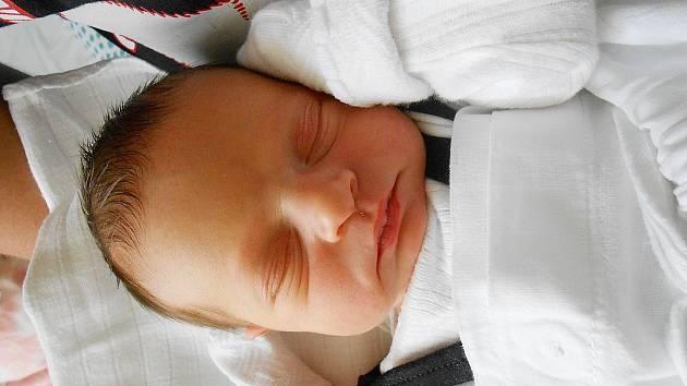 Štěpánka Strelcová se narodila 23. května, vážila 2,5 kg a měřila 46 cm. S maminkou Petrou a tatínkem Honzou bude bydlet v obci Buda.