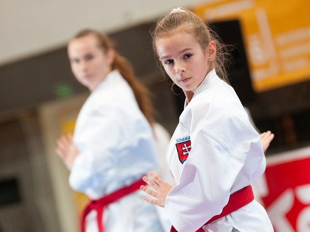 21. ročník Vánoční ceny v karate