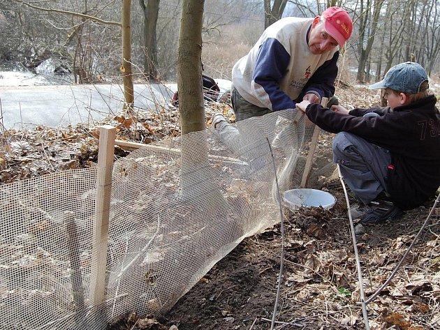 Stavění bariér pro migrující obojživelníky u Podhradské tůně u Bakova nad Jizerou