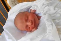 KAROLÍNA Kloučková se narodila 30. března. Vážila 3,53 kg a měřila 51 cm. Maminka Jana a tatínek Miloslav si  ji odvezou domů do Bělé pod Bezdězem.