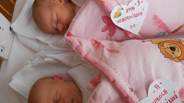 Nikola a Ema Voborníkovy se narodily 17. ledna mamince Kateřině a tatínkovi Davidovi z Loučeně. Nikola vážila 2,73 kg a měřila 45 cm. Ema vážila 2,92 a měřila 46 cm. Doma se na ně již těší sourozenci Ondřej a Anna.