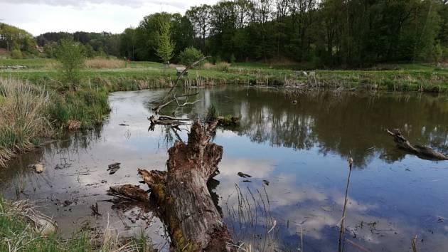Suhrovické rybníky