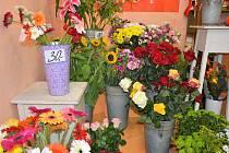 Jako poděkování za vysvědčení začínají luční květiny vytlačovat růže.
