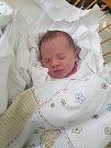 Nikolka Horáčková se narodila 28. října, vážila 3,32kg a měřila 48 cm. S maminkou Lucií a tatínkem Ondřejem bude bydlet v Mladé Boleslavi, kde už se na ni těší bráška Kubíček.