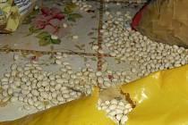 Myši měly v kuchyni v sukoradském motorestu pré.
