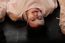 Boleslavské divadlo připravilo Bílou nemoc. Diváci ji budou moci vidět online