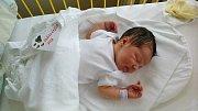 Ema Vaňoučková se narodila 15. listopadu, vážila 3,31 kg a měřila 48 cm. S maminkou Michaelou a tatínkem Tomášem bude bydlet v Bělé pod Bezdězem.