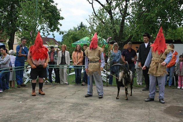 Letošní Házení kozla v Nové Telibi