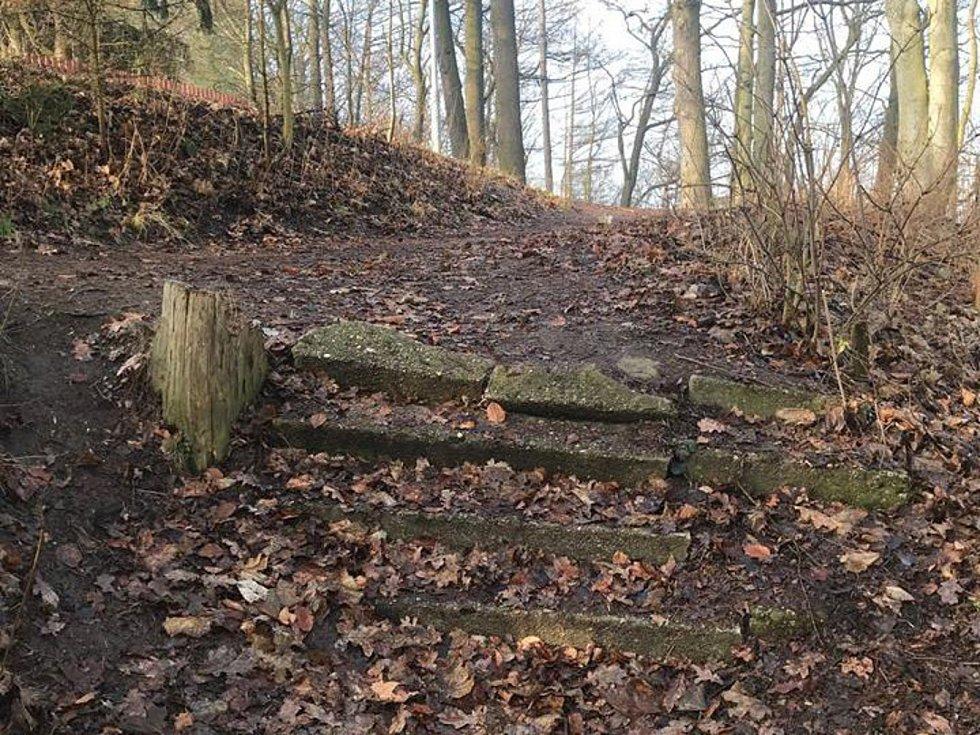 Lesopark v Mnichově Hradišti