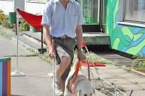 Vodící pes je pro nevidomého nenahraditelným společníkem.