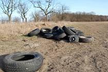TAKOVOU hromadu starých pneumatik byl někdo schopný vysypat na pole hned vedle ovocného sadu na Sluneční v Luštěnicích.