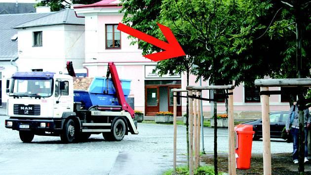 Za větvemi stromu u Střední průmyslové školy se  dopravní značka doslova ukrývá.