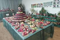 Z výstavy ovoce, zeleniny a květin v Žerčicích