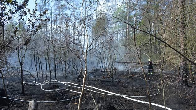 Požár lesní školky u obce Dolní Slivno.