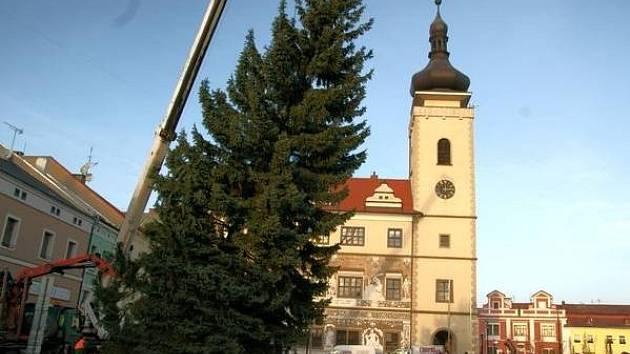 Vánoční strom dorazil do Boleslavi