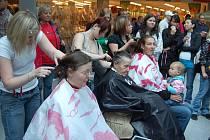 Kouzla s vlasy. Zájemce zadarmo ostříhali studenti ze Soukromé střední školy MAJA.