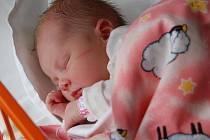 Povánoční dáreček dostali rodiče Alice Mazurová a Jaroslav Pavlíček z Mladé Boleslavi, když se jim 25. prosince narodila dcerka Hanička. Její míry jsou 48 centimetrů a 3,060 kilogramů.