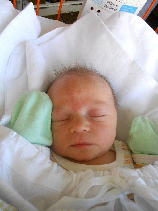 ELEN Šneková se narodila 20. dubna, vážila 3,3 kg a měřila 49. S maminkou Danielou a tatínkem Janem bude bydlet v Mladé Boleslavi.