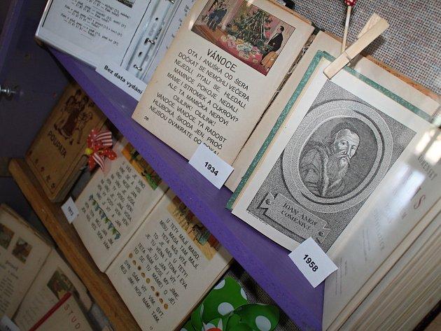 Sbírka Anny Najmanové čítá ivzácné starší kousky.