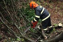 Hasiči z HZS Mladá Boleslav odstranili popadané stromy ze silnice mezi Vincem a Rokytovcem na Mladoboleslavsku v sobotu odpoledne.