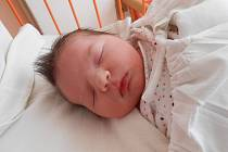 BARBORKA Pletichová se narodila 17. února, vážila 3,64 kilogramů a měřila 51 centimetrů. Maminka Kateřina a tatínek Jaroslav si ji odvezou domů do Horních Počernic, kde už se na ni těší bráška Jaroslav.