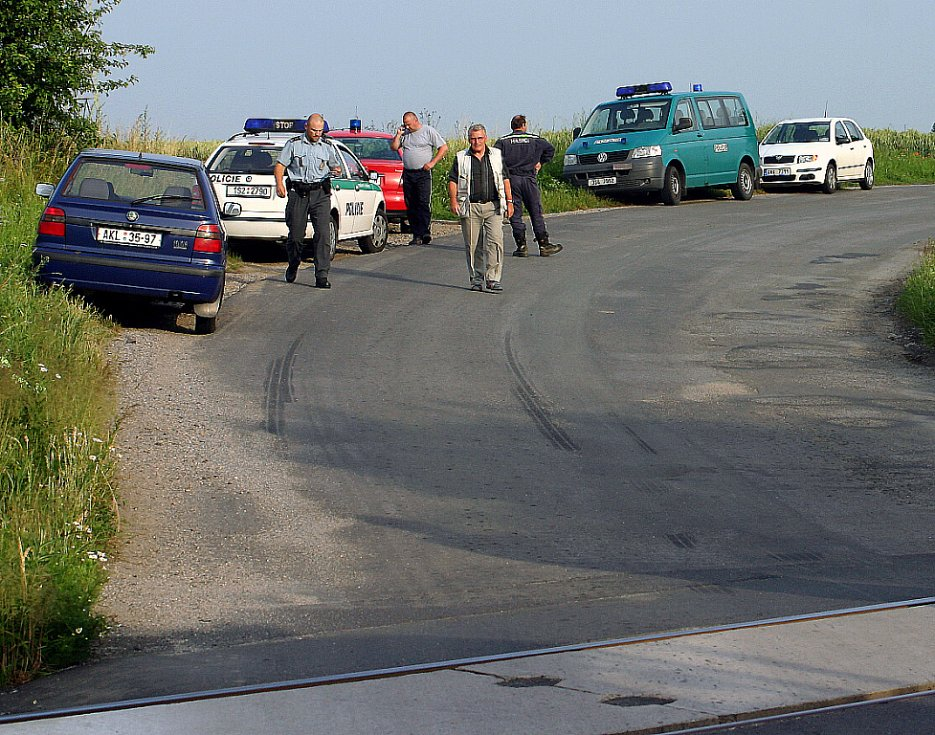 Dopravu na místě nehody řídili hasiči.