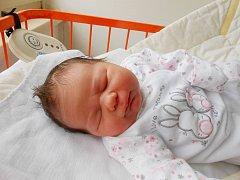 SABINKA Forejtarová se narodila 10. dubna, vážila 3,8 kg a měřila 49 cm. Maminka Milena a tatínek David ji odvezou domů do Jabkenic. Tam už se na sestřičku těší 6letý Daneček.