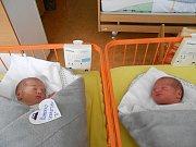 Sebastian a Damian Šumerajovi se narodili 2.dubna. Vážili shodně 3,02 kg. Sebastian měřil 49 cm a Damian 48 cm. S maminkou Petrou a tatínkem Štefanem budou bydlet v Mnichově Hradišti, kde už se na ně těší sestřička Emily.