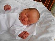 Sofia Tóthová se narodila 17. ledna, vážila 2,77 kg a měřila 47 cm. S maminkou Martinou a tatínkem Ladislavem bude bydlet v Kosořicích.