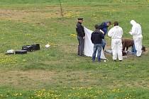 Kriminalisté ohledávají tělo mrtvé dívky nalezené na okraji Sojovic.