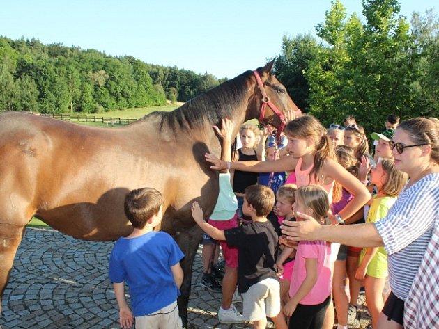 Děti z divadelního tábora navštívili ranč na Blatech.