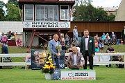 Na Krásné louce v Mladé Boleslavi se konala mezinárodní výstava psů.