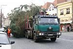 Vánoční strom už byl instalován na Staroměstském náměstí v Mladé Boleslavi.