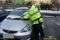 Strážníci kontrolovali auta